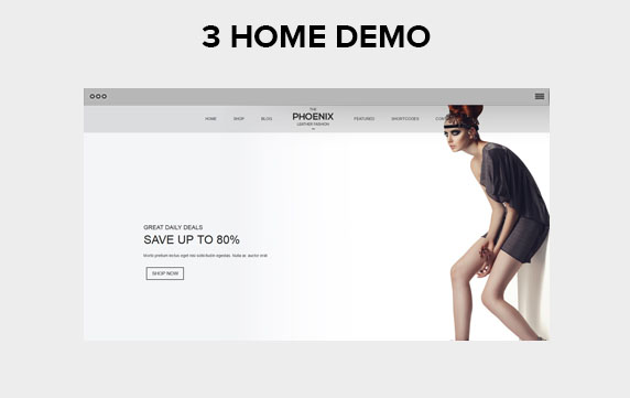 3 Homepage demos